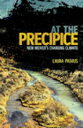 Cover of At the Precipice